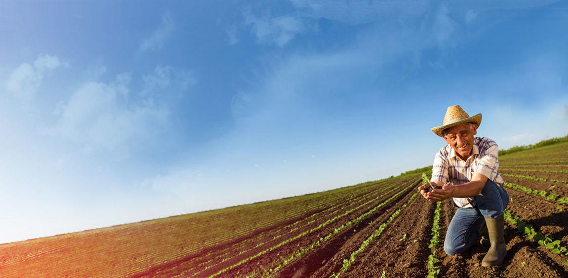 Soill Farmers Portal