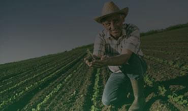 Soill - Farmers Portal